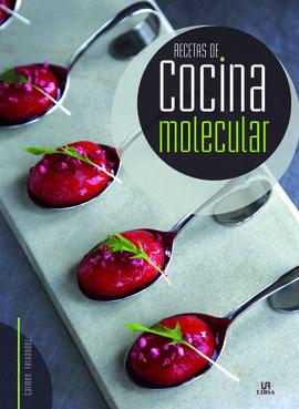 Recetas de cocina molecular 9788466234139 Libros de cocina molecular pdf gratis